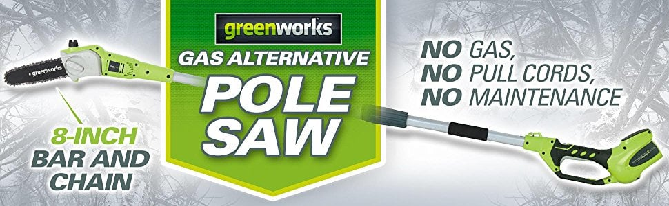 GreenWorks 20672 G-MAX 40V 8-Inch Cordless Pole Saw